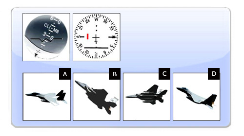 Pilotentest Instrumenten Interpretatie 1