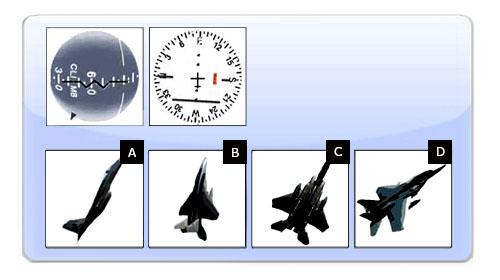 Pilotentest Instrumenten Interpretatie 7
