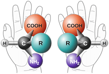 Representation of chirality in chemistry in comparison to human hands